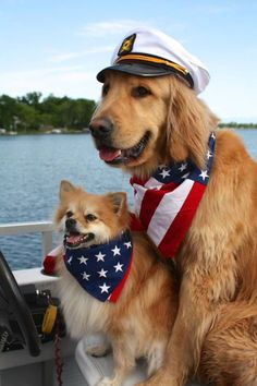 """""""Happy Fourth of July"""" friends!"""
