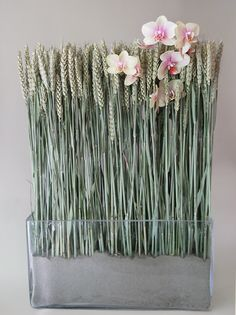 Description:Glass vase filled with wheats and a stem of phalaenopsis orchid Size:H: 65cm x L: 40cm Usually ships in:24h