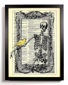 Skeleton In Frame With Bird Repurposed Book Upcycled Dictionary Art Vintage Book Print Recycled Vintage Dictionary Page  Buy 2 Get 1 FREE