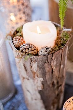 Part of the Birch-themed decor, the pinecones and birch add a woodsy touch.