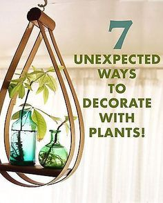 7 Unexpected Ways To Decorate With Plants, useful guide, easy to read, quick tips| eBay