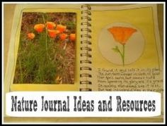 Nature Journals-Ideas and Tips. Lots of examples and ideas for you to use with your family.