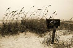 kindred spirits images | Kindred Spirit Photograph by William Haney - Kindred Spirit Fine Art ...