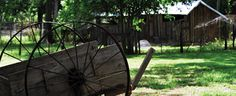 Dudley Farm. Now a historical State Park. Cool place to visit and see what life was like for Florida homesteaders in the late 1800's-1940's.