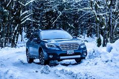 Today's Fan Photo Friday is from Antwane Sonneveldt. What's a little snow?