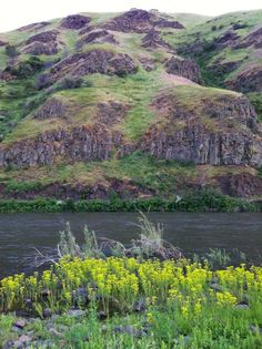 Washington State Snake River