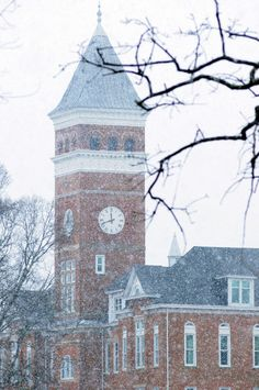 Winter at Clemson - Seeing this in person could help me like Clemson a little bit, lol ~LC Clemson Football, Clemson Tigers, College Campus, College Fun, Death Valley, Way Of Life, South Carolina, Places To See, The Good Place