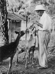 Humanitarian Albert Schweitzer-men taking care of babies or animals melt my heart