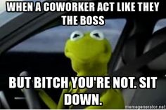 when a coworker act like they the boss but bitch you're not. Sit down. - Kermit the Frog driving