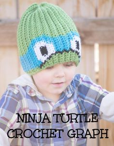 Ninja Turtle Color Grid for Graph Beanie