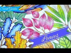 Secret Garden Colouring Book | Leaves | Jardim Secreto | Чарівний сад - YouTube
