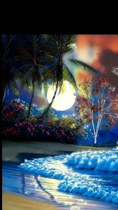 Good Night Love Images, Beautiful Nature Scenes, Beautiful Photos Of Nature, Beautiful Flowers Wallpapers, Beautiful Nature Wallpaper, Beautiful Gif, Pretty Wallpapers, Beautiful Landscapes, Photography Studio Background