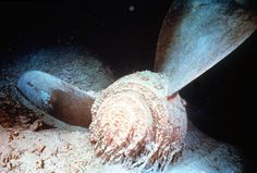 The giant propeller of the sunken Titanic lies on the floor of the North Atlantic.