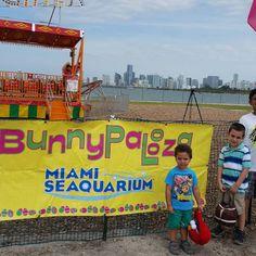 Easter egg hunt at Miami Seaquarium celebrating Penguin-Palooza. #miamiseaquarium #mackid #mackidnwmiami #mackidmiamieast