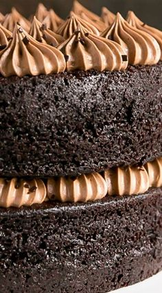French Silk Pie Cake ~ Incredibly moist chocolate cake layers topped with an unbelievably silky chocolate frosting.