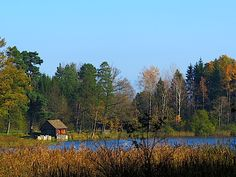 Cabin, Mountains, House Styles, Nature, Travel, Water Pond, Woodland Forest, Voyage, Cabins