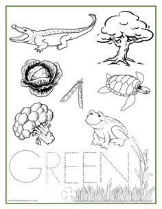 GREEN Color Activity Sheet