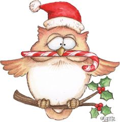 Christmas owl by Laurie Furnell