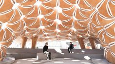 ICD/ITKE RESEARCH PAVILION 2015-16 - STUTTGART 2016  Institute for Computational Design (ICD) – Prof. Achim Menges Institute of Building Structures and…