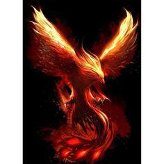 Dark Fantasy Art, Fantasy Kunst, Phoenix Bird Tattoos, Phoenix Tattoo Design, Phoenix Wings, Phoenix Dragon, Mythical Creatures Art, Mythological Creatures, Phoenix Artwork