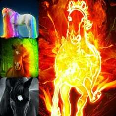 dark , fire, horses , digital , art artwork wallpapers ...