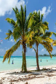 Experience The Magic Of French Polynesia - Travel & Pleasure Bora Bora, Tahiti, Amazing Destinations, Vacation Destinations, Society Islands, Beautiful Places In The World, Beach Holiday, French Polynesia, Tourism
