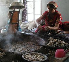 artisanat cocon de soie tissage soie