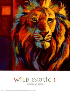 Wild Exotic I, by John Douglas. Love the colors...and the subject, obviously.