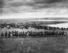 Last Bow River Ranche cattle round-up, near Cochrane, Alberta. Date: [ca Photographer/Illustrator: Montgomery, W. Rare Photos, Old Photos, Vintage Photos, Real Cowboys, American Frontier, Le Far West, Mountain Man, Old West, The Ranch
