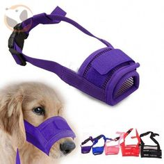Other Supplies Adjustable Pet Dog Mask Bark Bite Mesh Mouth Muzzle Grooming Anti Stop Chewing & Garden Pet Dogs, Dogs And Puppies, Pets, Nylons, Dog Boarding Near Me, Dog Muzzle, Dog Mask, Dog Insurance, Can Dogs Eat