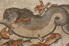 Big and small fish are seen in this detail from an intricate ancient Roman mosaic as it is revealed some 13 years after it was first discovered in the ruins of a 4th century AD building, on July 1, 2009 in Lod in central Israel. The beautiful 1,700 year old mosaic floor, which is regarded as one of the most magnificent and largest ever revealed in Israel,