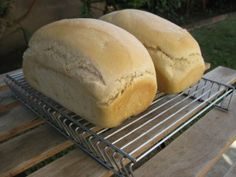 solar oven bread recipes