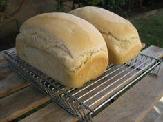 Simple Sun Oven Bread | Sun Oven® | The Original Solar Oven & Solar Cooker