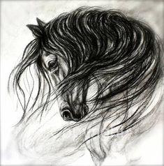 Elegant Horse Drawing