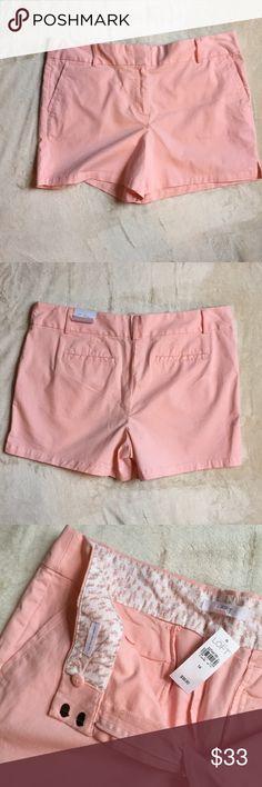 """LOFT NWT Pink Riviera Short Light pink in color. 4"""" inseam. LOFT Shorts"""