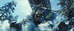 Blog: Did you know? 8 Random Facts and Ninja Turtles!   Tupper Lake, Adirondacks
