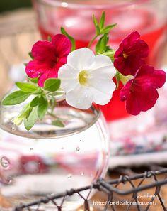 ▾ ๑♡ஜ ℓv ஜ ᘡlvᘡ༺✿ ☾♡·✳︎· ♥ ♫ La-la-la Bonne vie ♪ ❥ Daffodils, Pansies, Summer Flowers, Beautiful Flowers, Photo Bouquet, Flower Phone Wallpaper, Simply Beautiful, Beautiful Homes, Petunias