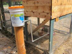 Chicken Coop Waterer Bucket