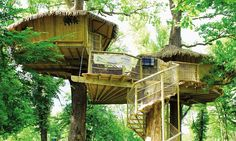 Camping 25ft in the air in treehouses on a family holiday in France http://dailym.ai/1nK8tFV