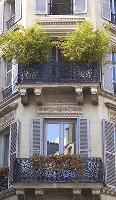 """Another """"postcard"""" from my archives......   There was something celebratory about this upper balcony, with its flourishing bamboo and windows flung open on the first day of Spring, and the blue sky and brilliant cloud reflected in the windows below."""