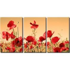 Framed Huge 3 Panel Floral Art Flower Field Red Poppy Giclee Canvas Print
