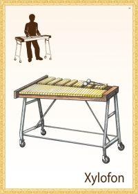 Hudební nástroje | Didaktické pomůcky Novadida Teaching Music, Piano Music, Flute, Musicals, Music, Music Lessons