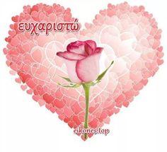 Happy Birthday, Feelings, Happy Brithday, Urari La Multi Ani, Happy Birthday Funny, Happy Birth