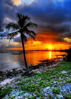 Cayman Island Sunset
