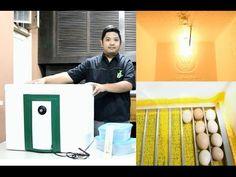 DIY Egg Incubator, Part 1 of 3