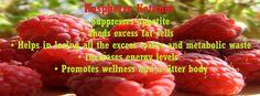 I Love Raspberry Ketones #RaspberryKetones #WeightLossSupplements #raspberryketone #pureraspberryketone Raspberry Ketones, Weight Loss Supplements, Metabolism, Pure Products, Fruit, Food, Essen, Meals, Yemek