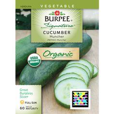 Bur Muncher Cuber Seed Packet