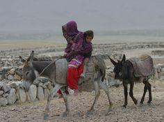 Travel by Donkey outside Kabul, Afghanistan. Photo by Radio Azadi. - Looks like extreme fun!