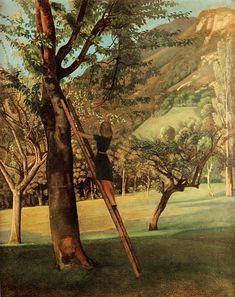 Balthasar Klossowski de Rola 'Balthus' - The Cherry Tree, 1940 Pierre Bonnard, Kandinsky, George Grosz, Post Impressionism, Modern Artists, Retro Art, Old Art, French Art, Tree Art