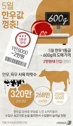 [그래픽뉴스] 5월 한우값 '껑충' http://www.news1.kr/photos/details/?1901224 Designer, Eunyoung Bang.  #inforgraphic #inforgraphics #design #graphic #graphics #인포그래픽 #뉴스1 #뉴스원 [© 뉴스1코리아(news1.kr), 무단 전재 및 재배포 금지] #한우 #소 #meat #cow